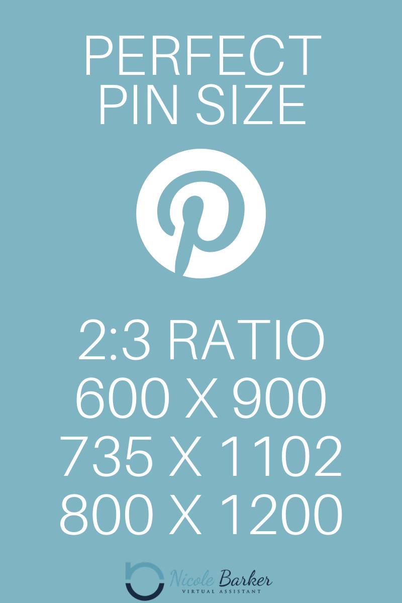 Pin Size - Nicole Barker VA